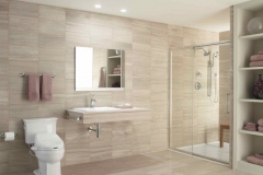 Barrier-Free-Bathroom-3